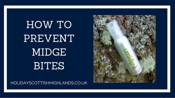 Blog title - midge bites
