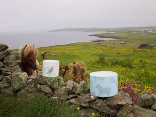 Julie Williamson Designs lampshades with some suitably impressed Shetland ponies