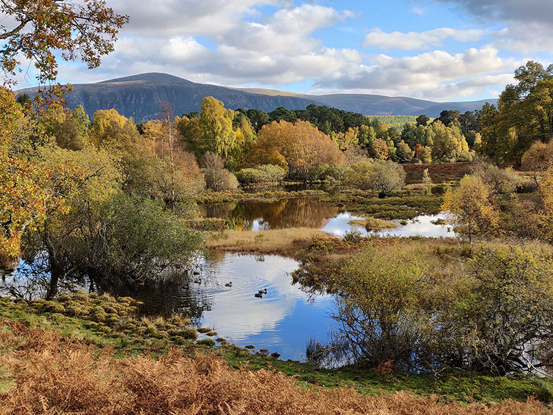 Loch Insh, Kincraig