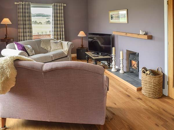 Tombae Boat of Garten holiday cottage living area fire